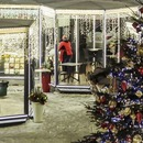 Over 100 restaurant chalets to open at the Journey to Christmas festival