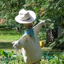 Scarecrow in Odintsovo
