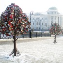 Trees of Love on Luzhkov Bridge