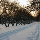 Kolomenskoe is different seasons of the year