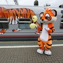 Russian Railways joins campaign for protection of Amur tiger and Far Eastern leopard