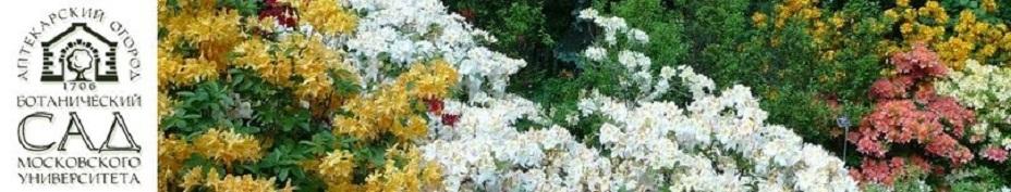 баннер внизу3 ботанический сад - Чайф