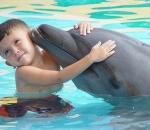Центр плавания с дельфинами открывается в Москвариуме 1 мая